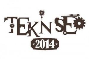 teknseo2014