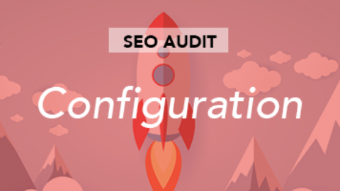 SEO audit configuration
