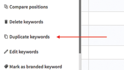 SEO Rank tracking – Duplicate your keywords