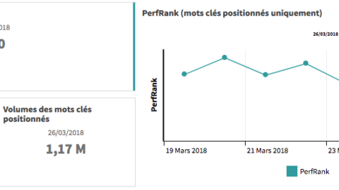New Indicator: The PerfRank
