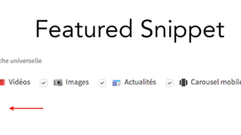 Featured Snippets support in the tool